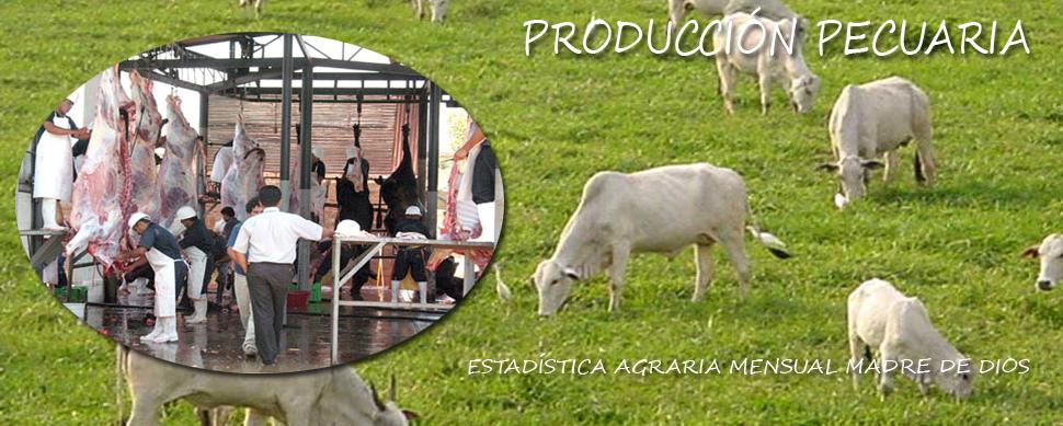 PRODUCCION PECUARIA