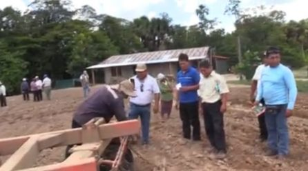 El director regional de Agricultura, Ing. Julio Ruiz Soria, dijo que, este adiestramiento a los agricultores es válido