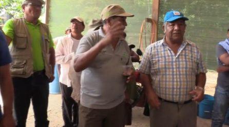 LOS AGRICULTORES DE MAÍZ DEL SECTOR SUDADERO DEL DISTRITO LAS PIEDRAS