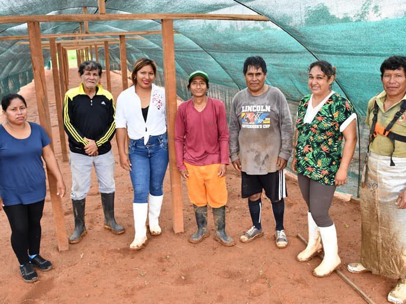 El gobierno regional, mediante la DRA, ejecuta el proyecto de recuperación de suelos reforestados, con la finalidad de mejorar la producción del cacao, en más de 25 sectores en la provincia de Tambopata en 18 zonas del Tahuamanu.