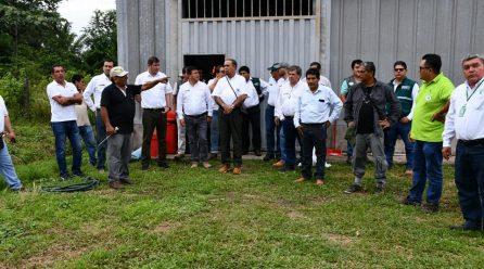 El gerente general del Goremad,Adolfo Clement ,y el director de la DRA lng. Víctor Hugo Tinco,así como funcionarios del MINAGRI, realizaron esta tarde una visita de a las parcelas demostrativas de cacao- sector Las Mercedes (Coopaser).