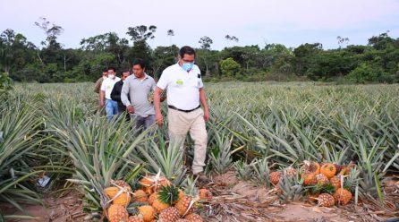 DIRECCIÓN REGIONAL DE AGRICULTURA DE MADRE DE DIOS, BRINDARÁ APOYO CON MAQUINARIA Y ASESORAMIENTO TÉCNICO A LOS AGRICULTORES.