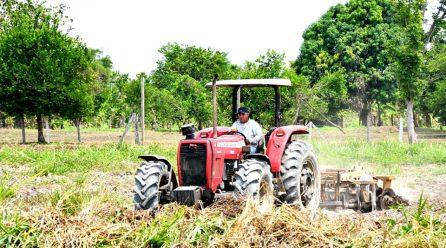 DRA CONTINÚA APOYANDO CON MAQUINARIA Y ASISTENCIA TÉCNICA A LOS AGRICULTORES DE MADRE DE DIOS.