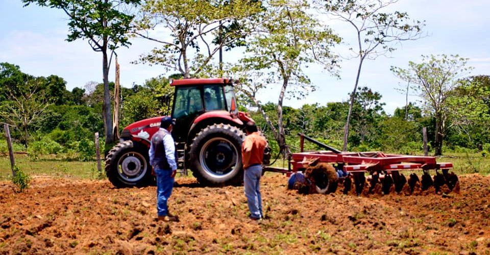 |GOREMAD MECANIZA MÁS 800 HECTÁREAS DE TIERRAS AGROPECUARIAS EN EL AÑO 2020 EN LA REGIÓN DE MADRE DE DIOS.