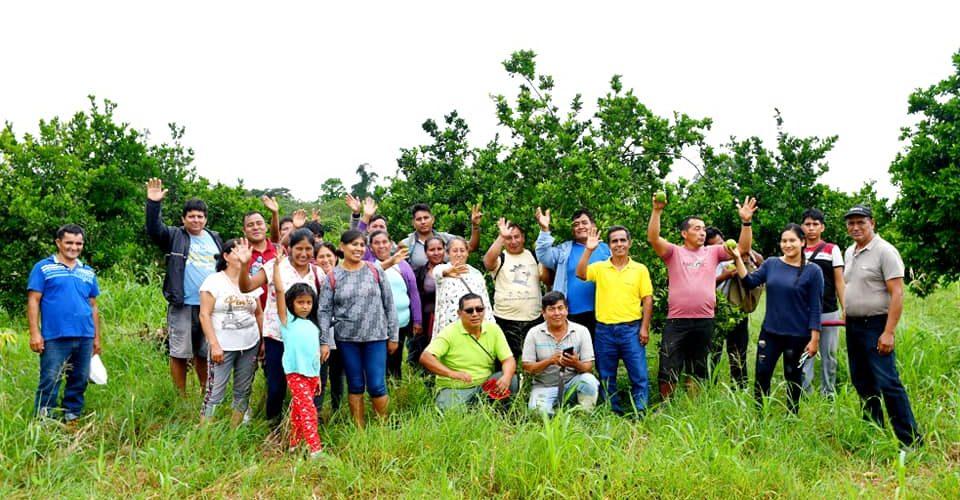 AGRICULTORES COMPARTEN EXPERIENCIA EN MANEJO DE CULTIVO DE CÍTRICOS.